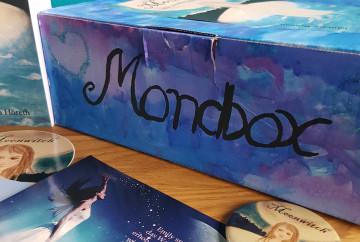 Bücherbox Schachtel